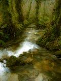 Herbstfallszene mit Fluss auf Wald Lizenzfreie Stockbilder