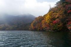 Herbstfarbbäume entlang dem Fluss Lizenzfreie Stockbilder