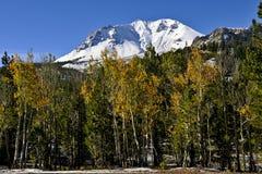 Herbstfarbe auf Espen, Lassen-Spitze, vulkanischer Nationalpark Lassens stockfotografie