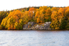 Herbstfarbe in den Bäumen nähern sich See Stockbild