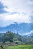 Herbstfarbe in den hohen grünen Bergen Stockbilder
