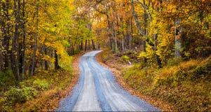 Herbstfarbe entlang einem Schotterweg in Frederick County, Maryland Stockfotografie