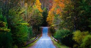 Herbstfarbe entlang einer Straße im Michaux-Zustands-Wald, Pennsylvania Stockbild