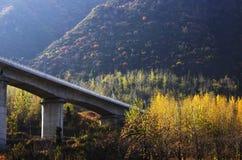 Herbstfarbe von Qinling Lizenzfreie Stockbilder