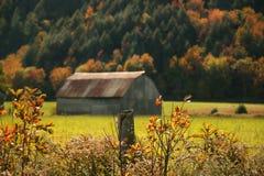 Herbstfarben Stockbild