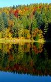 Herbstfarben auf einem Wasser Stockfotografie