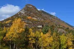 Herbstfarben in den Mischwäldern von Posets-Maladetanaturpark, Spanisch Pyrenäen Lizenzfreie Stockbilder