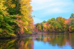 Herbstfarben, die im a-Teich sich reflektieren lizenzfreie stockbilder
