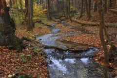 Herbstfarben in einem Nebenfluss Lizenzfreie Stockfotografie