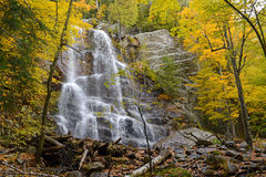 Herbstfarben - Fall verlässt im Adirondacks, New York Lizenzfreie Stockfotos