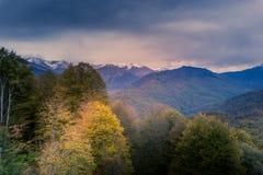 Herbstfarben mit schneebedeckten Bergen im Hintergrund lizenzfreie stockfotografie