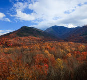 Herbstfarben, rauchige Berge Stockbild