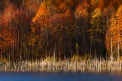 Herbstfarben reflektieren sich im Wasser von einem Gebirgssee Stockfotos