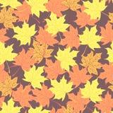 Herbstfarben 9 Rot und Orange färbt Efeublattnahaufnahme Endloses nahtloses Muster Lizenzfreie Stockfotos