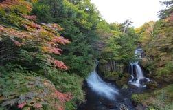 Herbstfarben am Ryuzu-Wasserfallbecken in Nikko, Präfektur Tochigi, Japan Stockbild