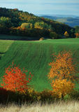Herbstfarbenspektrum Lizenzfreie Stockfotografie