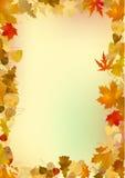 Herbstfeld Stockbild