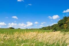 Herbstfeld. Stockfoto