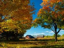Herbstfeld Stockfoto