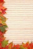 Herbstfeld Stockbilder