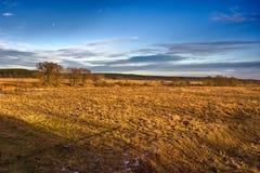 Herbstfeld in der russischen Landschaft Lizenzfreies Stockfoto