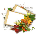Herbstfeld mit Blättern und Apfel Stockbild