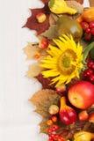Herbstfeld mit Früchten, Kürbisen und Sonnenblumen Lizenzfreies Stockbild
