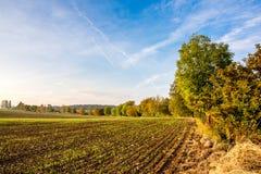 Herbstfeld und -bäume Autumn Time Stockfotos