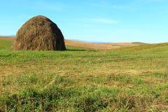 Herbstfelder gegen den blauen Himmel Lizenzfreies Stockbild