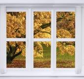Herbstfenster lizenzfreies stockfoto