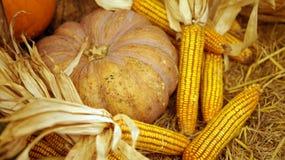 Herbstferienkürbis und Mais, Dankgeben Stockfoto