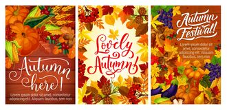 Herbstfestival- oder -Parteiposter mit Fall erntet Stockbilder