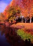 Herbstfluß Lizenzfreies Stockbild
