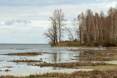 Herbstflußufer Stockfoto