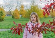 Herbstfoto des schönen kleinen Mädchens mit roter Niederlassung des japanischen Ahorns lizenzfreies stockbild