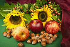 Herbstfrüchte Stockfotografie