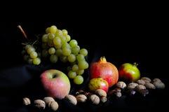 Herbstfrüchte Lizenzfreies Stockbild