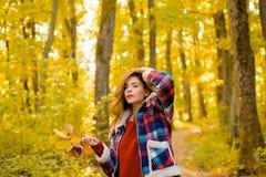 Herbstfrau im Herbstpark mit rotem Pullover Autumn Girl Kunstwerk des romantischen M?dchens Warmes sonniges Wetter Herbst lizenzfreie stockfotografie