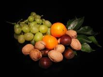 Herbstfrucht Stockbild