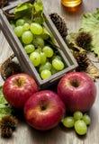 Herbstfruchtzusammensetzung stockbilder