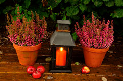 Herbstgartendekor lizenzfreie stockfotografie