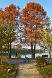 Herbstgasse im Park Lizenzfreie Stockfotos