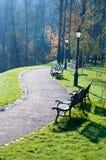 Herbstgasse im Park Stockfoto