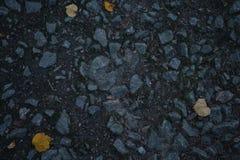 Herbstgassengrundnahaufnahmefoto mit Lindenblättern Stockfoto