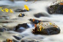 Herbstgebirgsfluss Stockbilder