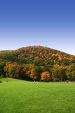 Herbstgehen Lizenzfreies Stockbild