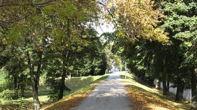 Herbstgehen Stockfotos