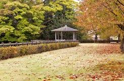 Herbstgehweg durch bunte Blätter in einem Park Stockbilder