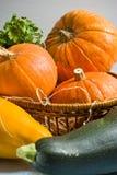 Herbstgemüse Lizenzfreie Stockfotos