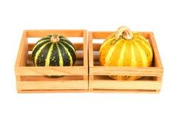 Herbstgemüse - Kürbisse Stockfotografie